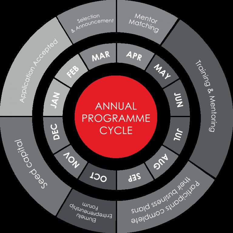 TEF Entrepreneurship Programme Cycle The Tony Elumelu Foundation Entrepreneurship Programme.